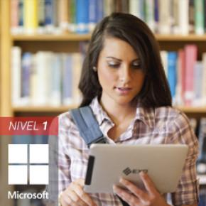 Microsoft Access 2016: Nivel I